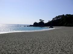 桂浜/Katsura Beach