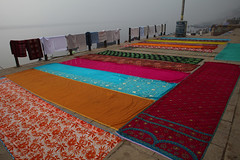 Drying Saris in Varanasi (sebastien banuls) Tags: voyage street morning travel winter cold men festival fog walking photography photographie religion foggy indie varanasi indians  indi sari indien hind indi ganga pradesh hodu sangam pilgrims benares uttar haridwar indland prayag  hindistan gange uttarpradesh  indija  desha ndia hindustan hindus  bharata   hiduism  hindia ardhkumbhmela   sdhu  indhiya bhratavarsha bhrrowtbaurshow  hndkastan       bhrata deshamu