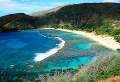 Hanauma Bay, Oahu, Hawaii (moonjazz) Tags: park travel blue fish beach nature landscape island hawaii aqua pacific oahu cove dive best tropical hanaumabay reef daytrip protected snokel