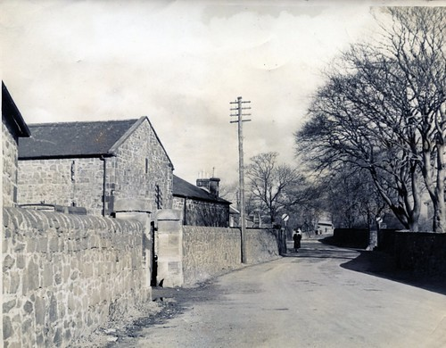 Mungall's Farm, Gartcraig  Road, Leading to Canal 1950