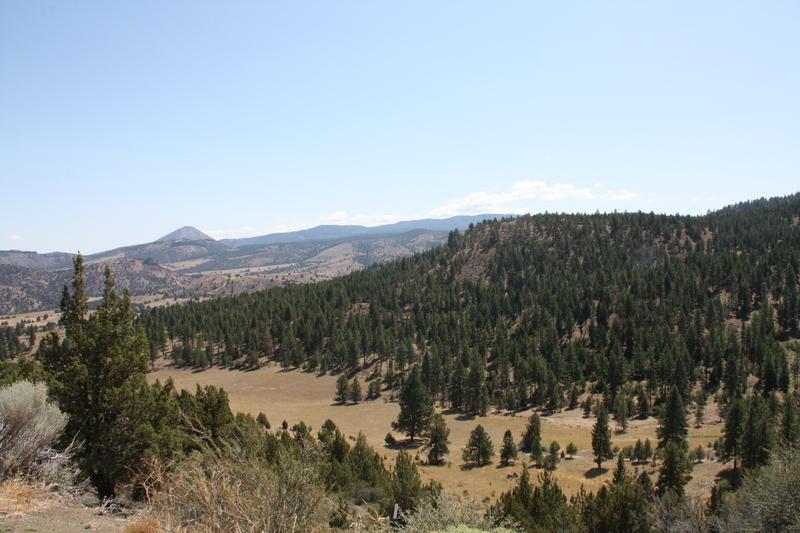 Hills Beyond