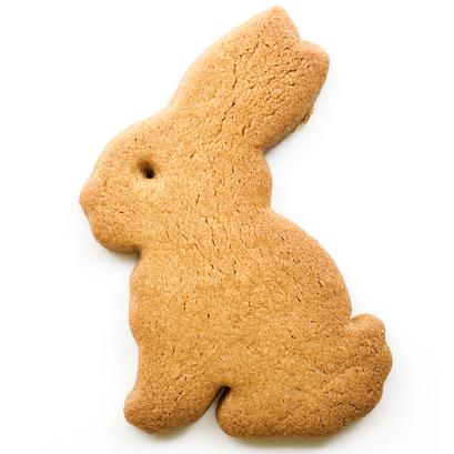 Bunny Bikkies (2)