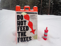 DO NOT FEED THE FOXES (scepdoll) Tags: jackson wyoming grandtetonnationalpark nationalelkrefuge elk bison foxes snowshoeing