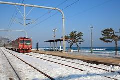 The train (HDH.Lucas) Tags: jeongdongjin station lucas winter sea 동형 train 정동진 기차 바다 겨울