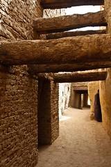 (678) Eine der zahlreichen kühlen Gassen (avalon20_(mac)) Tags: africa travel sahara nature geotagged desert egypt oasis 500 misr eos40d schulzaktivreisen