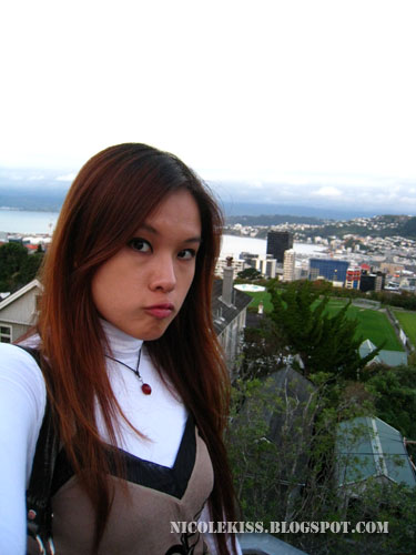 me and view of wellington