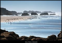 Seal Rock, Oregon (szeke) Tags: ocean sunset usa water rock oregon landscape us u