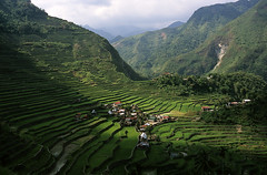 Batad Philippines (sebastien banuls) Tags: world voyage city travel sea copyright heritage field asian photography asia southeastasia photographie village rice paddy terrace south philippines terraces unesco worldheritagesite east pi manila cebu fields ricepaddies southeast makati agriculture ricefield 旅游 banaue batad unescoworldheritage filipinas ifugao riceterraces cordillera luzon mega paddies riceterrace philippinen philippine pasig ilhas copyrighted terraced ricecultivation 摄影 cordilleras filipijnen filippine フィリピン philippinecordilleras batade ifuago филиппины ilhasfilipinas cordilleraifugao riceterracesofthephilippine