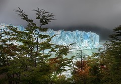 And then I hiked through the Autumn Trees to find the Glacier (Stuck in Customs) Tags: world park santa travel autumn trees wild terrain patagonia mountain lake storm cold color ice water argentina argentine rain clouds wonder lago photography march los high dangerous nikon dynamic stuck natural ominous gray hike glacier cruz national mysterious wilderness range perito moreno 2009 hdr trey customs argentino glacial glaciares ratcliff stuckincustoms d3x