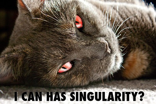 I CAN HAS SINGULARITY?