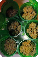 Reupping my medication (C.u.p.c.a.k.e.) Tags: trees tree weed 420 pot greens marijuana medicinal stoner ganja nugs naughtygrin