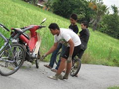 Motor jatuh Dalam Sawah (omaQ.org & Red Frame Memories) Tags: motor sawah dalam jatuh