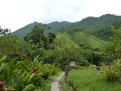 Views around El Retiro Lodge.
