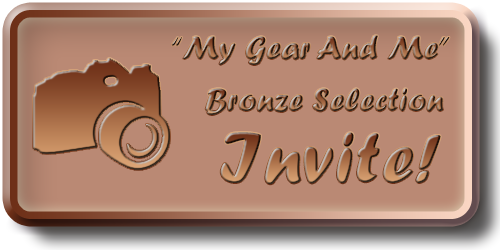 My Gear And Me - Bronze Selection Invite