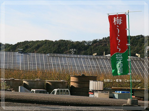 2009-12-13 和歌山 022 R