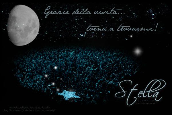 Veste grafica blog *Frammenti di Stella/Libero Community*...VIETATO PRELEVARE E/O COPIARE!!! - Grafica by Stella-di-Mare83
