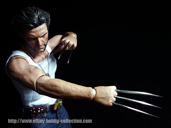 Wolverine (16)