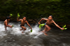 Abangan, Ubud - The mighty Abangan kids (Mio Cade) Tags: travel boy shirtless portrait bali boys water field kids river children indonesia fun photography canal kid interesting nikon child mud joy harvest run dirty chase padi panning muddy throw ubud earthasia abangan