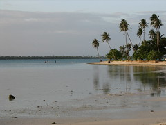 Locals swimming at Tereia Beach (Dennisworld) Tags: vacation frenchpolynesia maupiti maupitiresidence tereiabeach