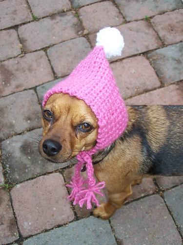 snow day hat - doggie style