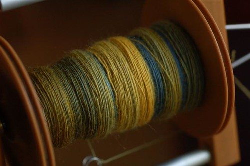 Handspun Yarn (in progress)