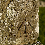 Knowlton Church Benchmark