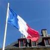 Francia-100