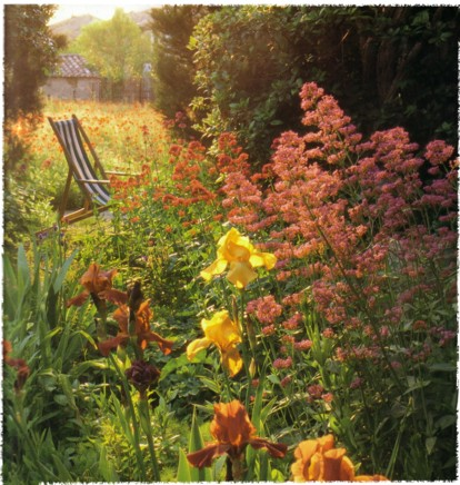wild mediterranean garden (new perennial garden - Noel Kingsbury)