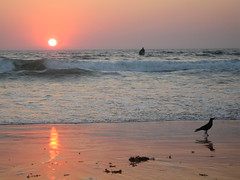 Sunset Baga 2. Goa. (konstantynowicz) Tags: sunset red sea wild sky orange sun india colour reflection beach wet silhouette skyline canon landscape gold golden coast seaside interesting sand asia waves colours indian goa wave shore ripples colourful reds fareast goldenhour baga bagabeach mygearandmepremium bagasunset 4timesasnice 6timesasnice 5timesasnice