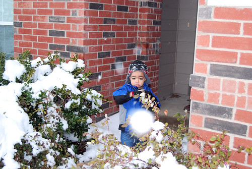 Zachary Unsure About the Snow
