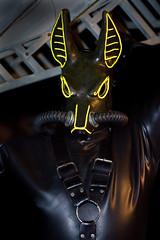 Jackal 5 (rebreatherstudent) Tags: rubber gasmask drysuit aquala smashwolf wildgasmasks