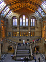 La gran sala / The great hall (SBA73) Tags: uk greatbritain inglaterra england london museum stairs hall museu unitedkingdom londres museo naturalhistorymuseum reinounido greathall supershot granbretaa neoromanesque anglaterra regneunit mywinners abigfave superaplus aplusphoto flickrdiamond granbretanya 100commentgroup mygearandme