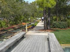 A Bike Path in Cerulean Park