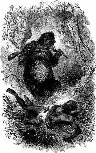 GORILLA ATTACK illo. from LOST IN THE JUNGLE (1900)