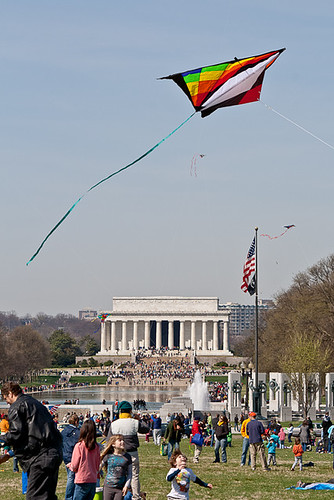 kites on the mall