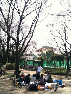 花見@駒場野公園
