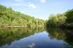 Diamond Mill Pond Reflection [South Mountain Reservation]