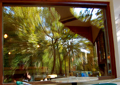 Reflection of an autumn day from the Greek island of Crete (Peace Correspondent) Tags: autumn distortion selfportrait blur reflection window d50 october europe mediterranean eu greece crete taverna plantanos southerneurope planetree greekisland vryses vrises blurism boutakasriver