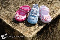 (Paula Jardim, Fotgrafa RJ) Tags: baby rio brasil riodejaneiro mom ensaio pregnant maternity jardimbotnico beb triplets poses mame gravidez papai maternidade grvida dady trigmeos