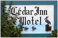 Cedar Inn Motel Sign (MickiP65) Tags: old travel vacation usa signs building tourism sign outside inn florida getaway motel september signage northamerica historical weathered fl fla 2009 cedarkey levy bldg canoneos30d michellepearson 09022009 copyrightedallrightsreserved 090209 cedarinnmotel 20090902sep022009 img0027613