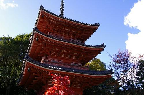 宝福寺三重塔 #7