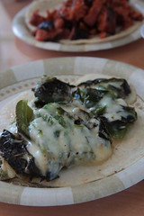 taco with roasted pasilla chiles and cheese