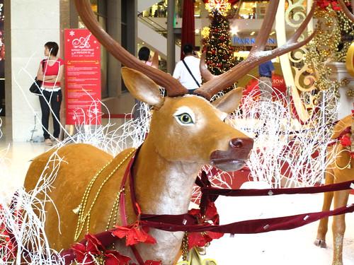 IMG_5081 The Reindeer , Pavillion