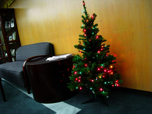 lobby tree at APU