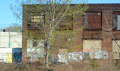 Window View (alankin) Tags: trees windows 15fav abandoned philadelphia buildings geotagged graffiti decay tags 100views fromthetrain boardedup inpassing philly walls septa postindustrial urbanlandscape redbrick r8 trainline stenton xgroup niknala nikond300 nikkoraf50mmf14 chestnuthillwestline 18apr2008 geo:lat=39991479 geo:lon=75169025 0800123an x4fav
