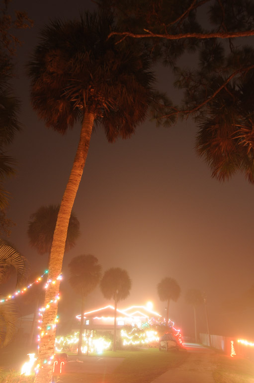 lights_fog_0146