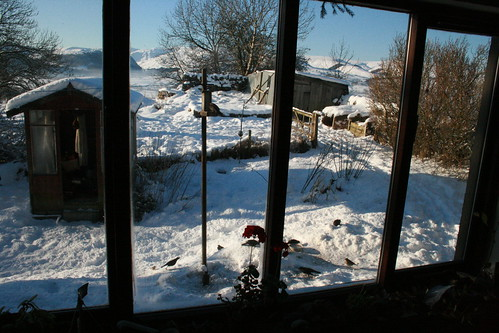 Window view of birds snow and hills