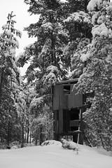 P1080977 (erikflickr) Tags: wood snow treehouse skog trehytte