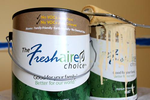 Say no to VOCs. Choose zero VOC paint. Freshaire iCertified by Riot of Reasons