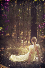 princess (Rebecca Nathan) Tags: flowers trees light yellow forest woods purple princess lostinthewoods rebeccanathan